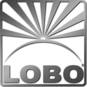 01d00600-the-company---logos---lobo-logo-version-2005-silver